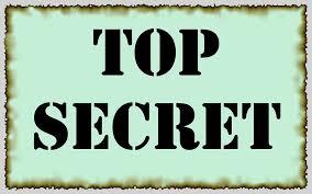 Acceso a información confidencial y secretos comerciales. Especial referencia a la contratación pública
